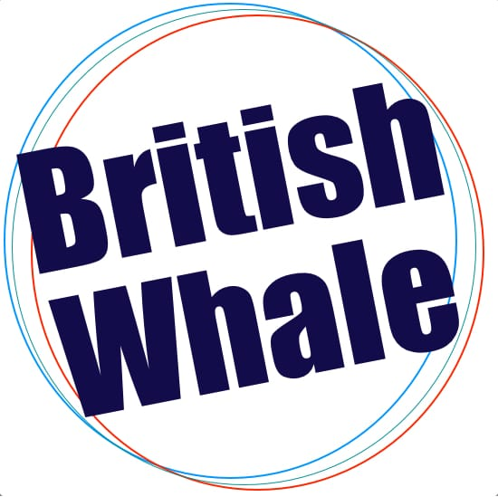British Whale MIDI Files | backing tracks | MIDI karaoke | MIDIS