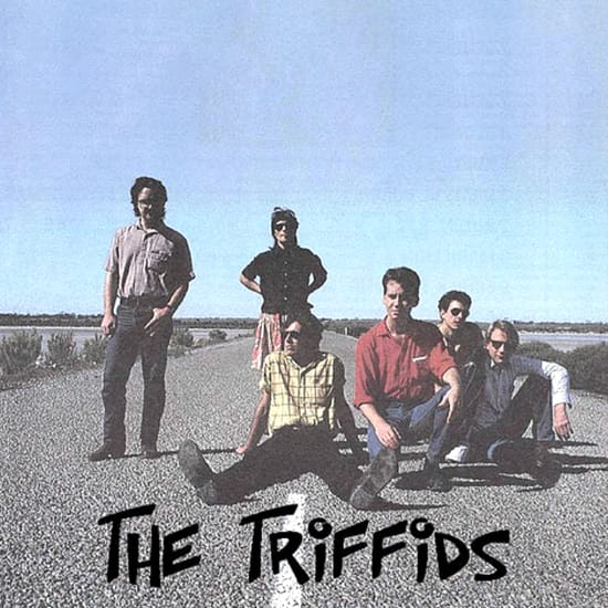 The Triffids MIDI files backing tracks
